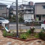 DIY庭づくり(植栽・植え方編)