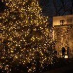 クリスマスにオススメの飾り付け!家や庭のイルミネーションについて