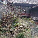 荒れた庭をきれいにする!おすすめの方法について