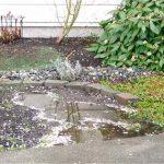 雨上がりにオススメな庭作業ベスト3