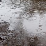庭の水たまり、水はけ改善の具体的な対策(暗渠排水)
